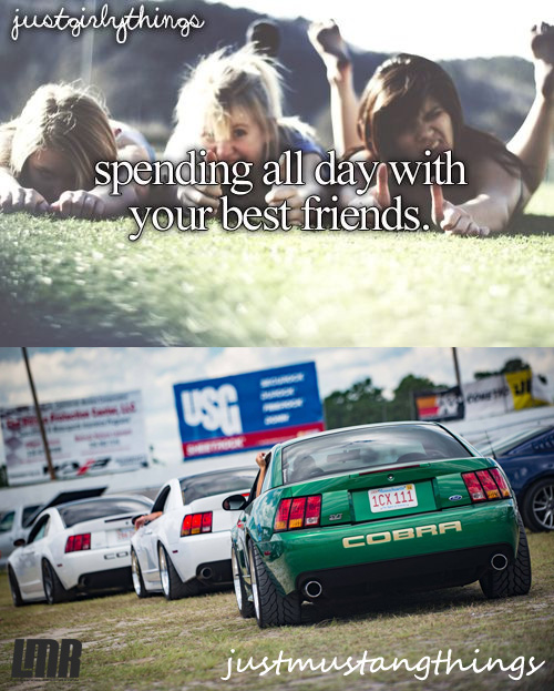 Just Mustang Things - Justag Mustang Things 9