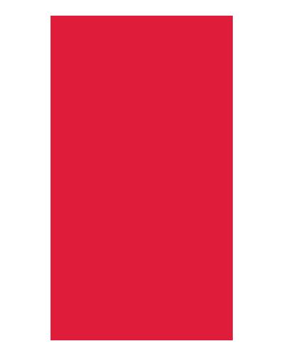 1994-04 Mustang Standard Seat